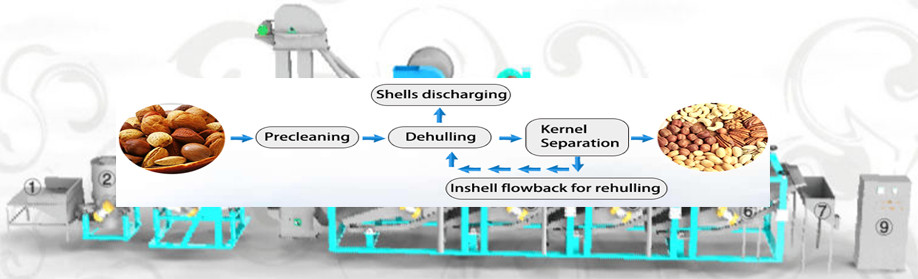 automatic fish viscera removal machine , fish innards cleanning machine , Killing fish machine
