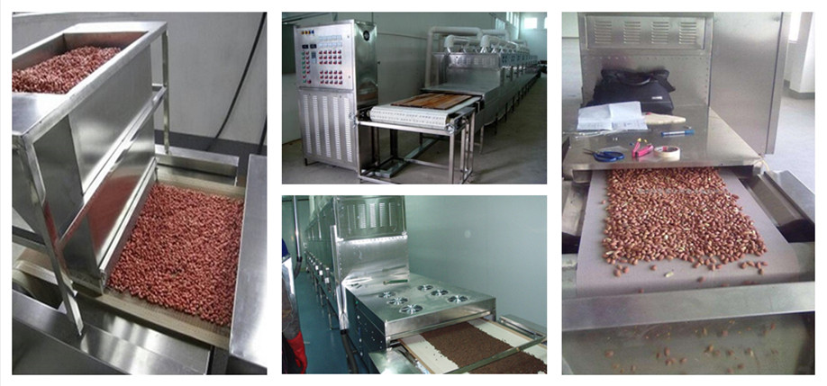 customized microwave soybean roasting / sterilize machine / dryer