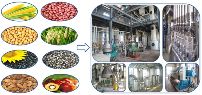 Chinese improved oil press filter supplier