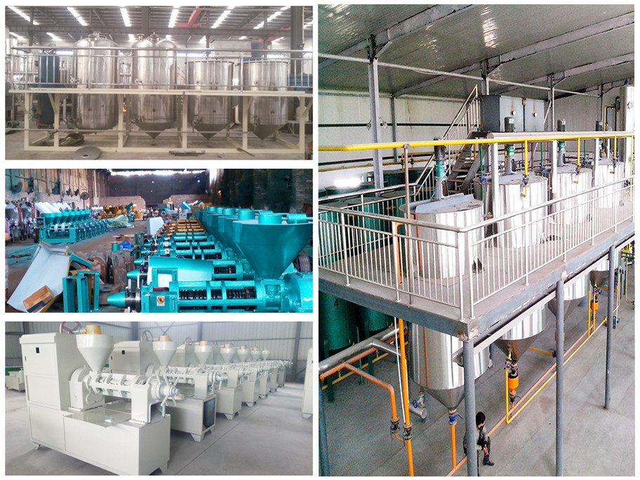 large capacity production line rapeseed oil mill machine installed for a big edible oil plant