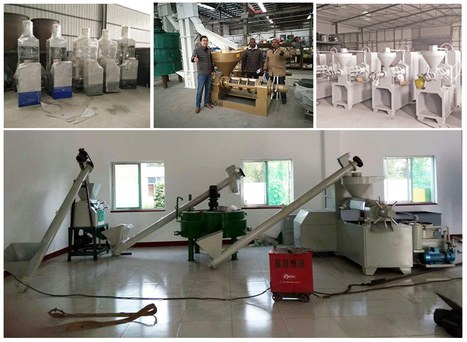 High efficiency automatic peanut/soybean/rapeseeds oil press machine