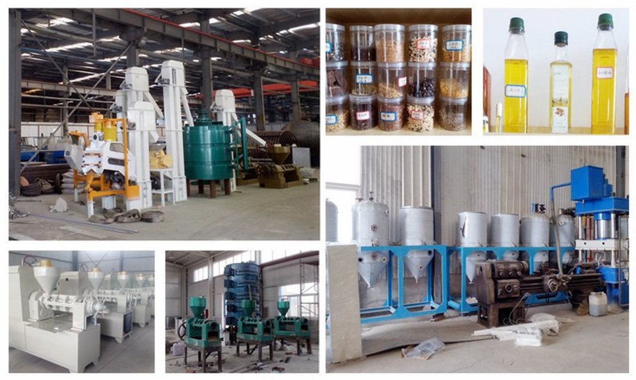 Professional oil milling machine soybean/walnut/peanut oil mill machine
