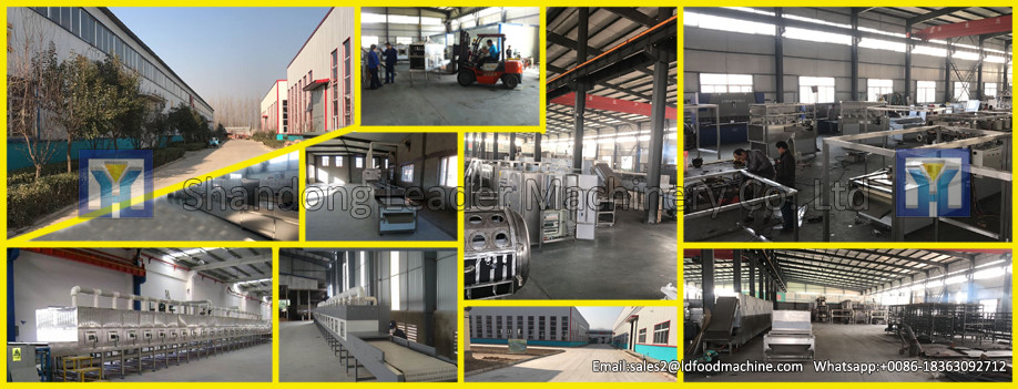 Banana/ lemon/ mango fruit drying machine/ fruit drying machine