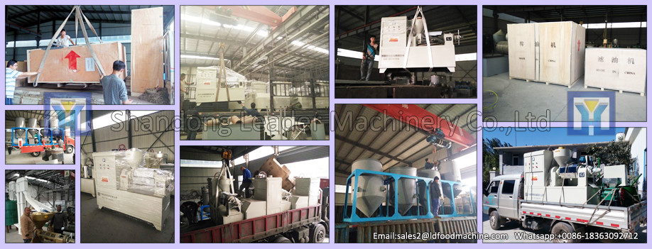 Jinan LD conveyor microwave dryer machine for fish