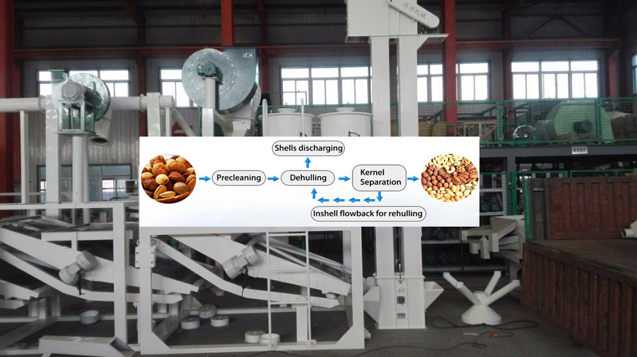 factory supplier 6YL Series peanut screw oil press machine
