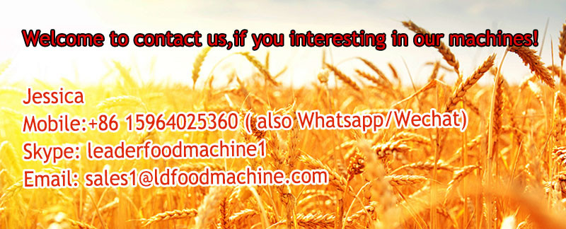 300TD sunflower oil mill edible oil machine hot sale in Europe.