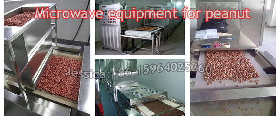 Microwave industrial tunnel almonds baking equipment
