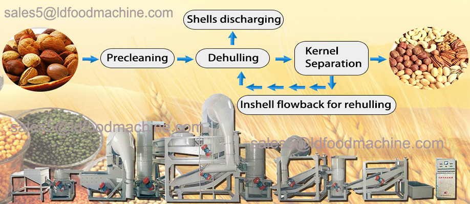 Sunflower seed pretreatment equipment for oil processing