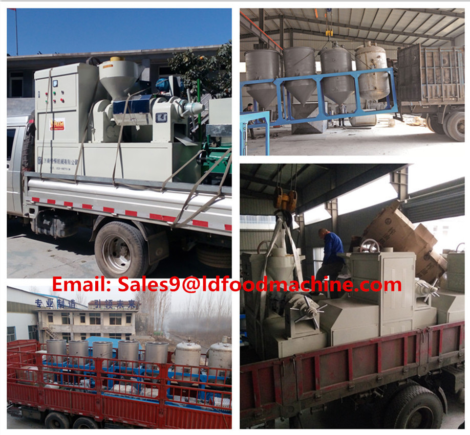Patented Palm oil fruit processing | pressing equipment for sale with CE approved