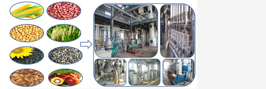 small palm oil refinery machine