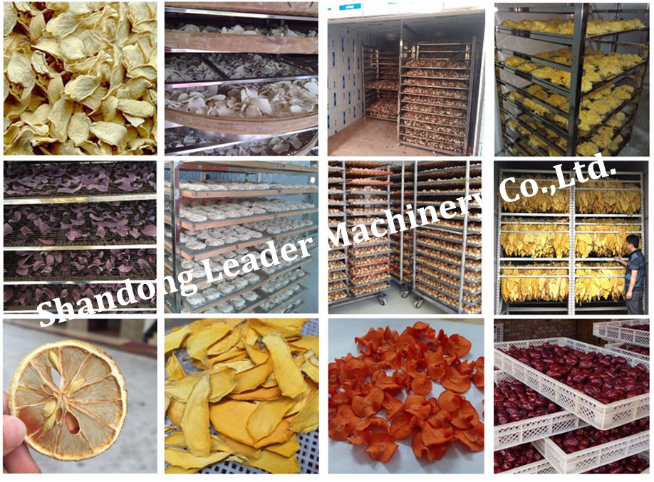 microwave tunnel vegetable / Cucumber drying machine / equipment