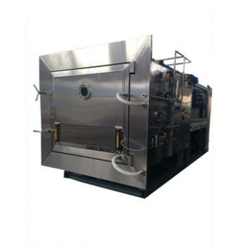 Custom Design Fresh Papaya Vacuum Freeze Dryer