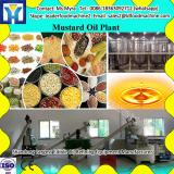 New design automatic fried flavoring snacks food machine with low price