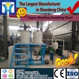LD sold newest garlic paste making machine