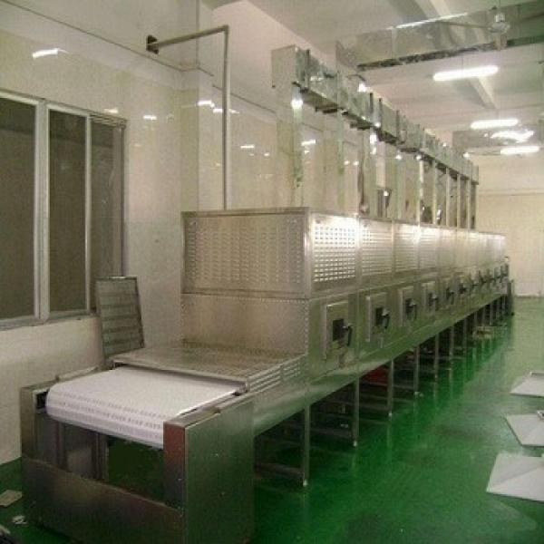 Big capacity continuous microwave nuts heating and roasting equipment for the cahsewnut peanuts #1 image