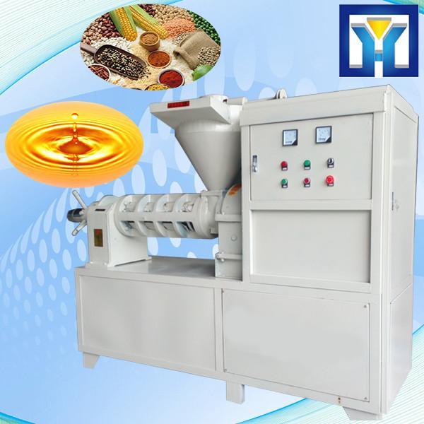 Pumpkin Seeds Oil Press Machine #1 image
