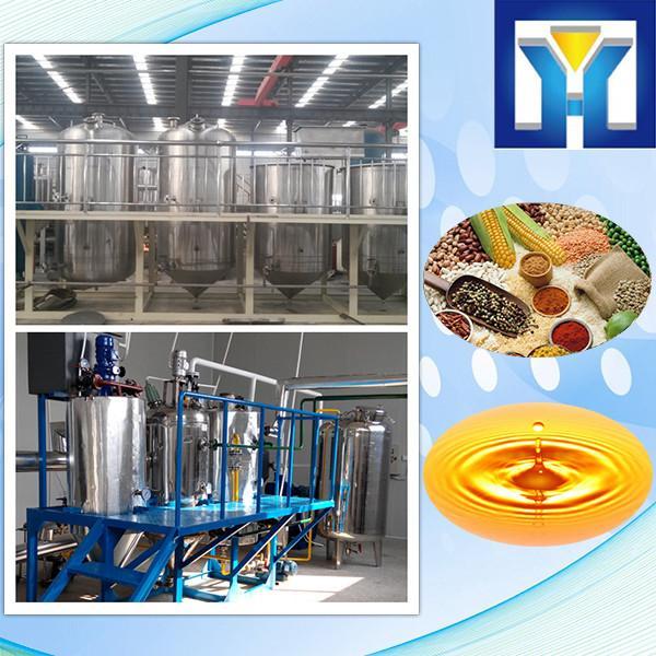 Pumpkin Seeds Oil Press Machine #2 image