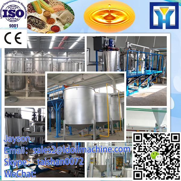 Oversea seal Service CE Turnkey Rice Bran Oil Making Machine Price #3 image
