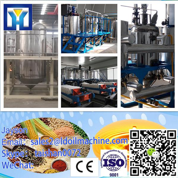 Professional fish Service Turnkey Edible Crude Palm Oil Refinery Plant #1 image