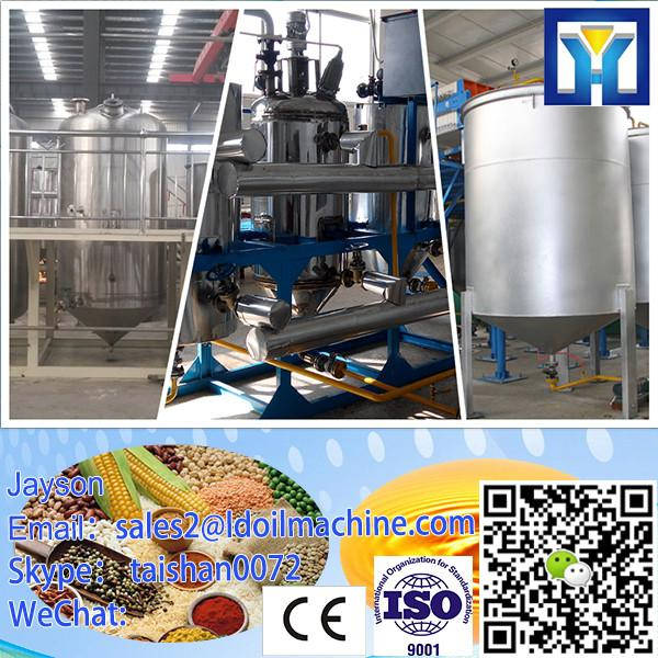 Professional liver Turnkey Service Groundnut Oil Refining Machine #2 image