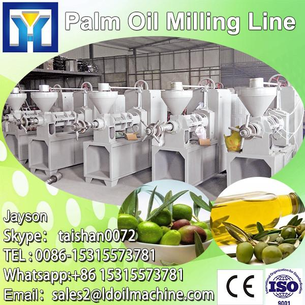 LD CE, BV, ISO certificate maize deep processing machine #1 image