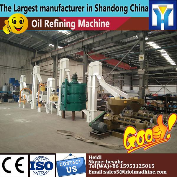 Small scale capacity edible complete set small palm oil processing machine palm oil refinery refining machine #1 image