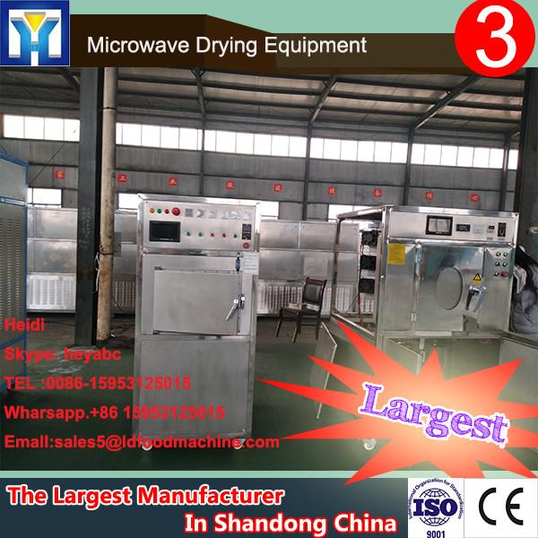 Industrial stainless steel Calocybe gambosa continuous microwave drying machine #1 image