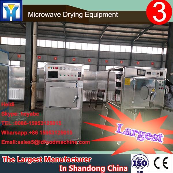 Industrial stainless steel grey mushroom microwave drying machine #1 image