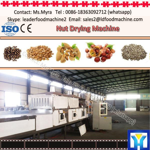 Automatic peanut dryer machine for food fruit nuts vegetable meat fish #1 image