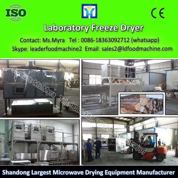 Industrial Vacuum Fruit and Food Freeze Dryer Lyophilization Machine #1 image