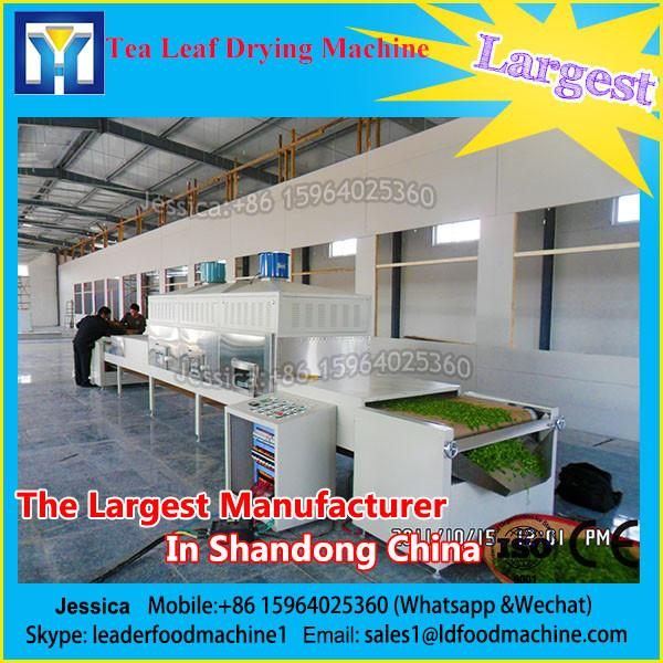 Large capacity fruit dryer, fruits and vegetables dehydration machine, industrial fruit drying machine #1 image