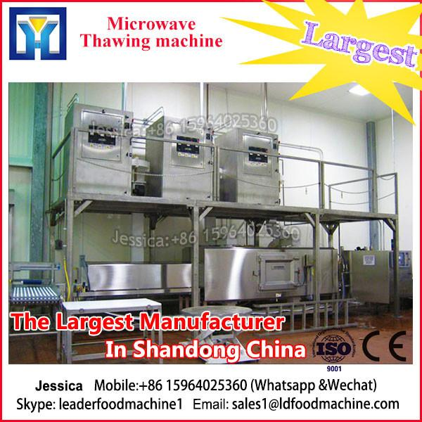 Mulit-Functin Fresh Food Industrial Vacuum Dryer #1 image