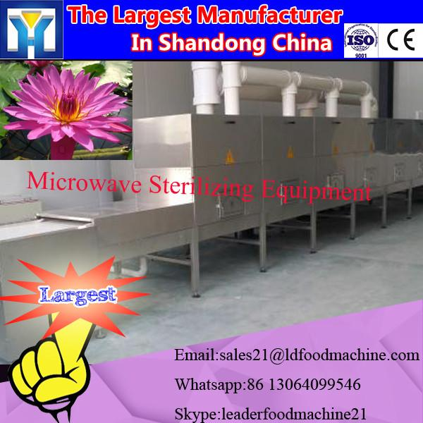 2016 New Vacuum fried mushroom chips production line #2 image