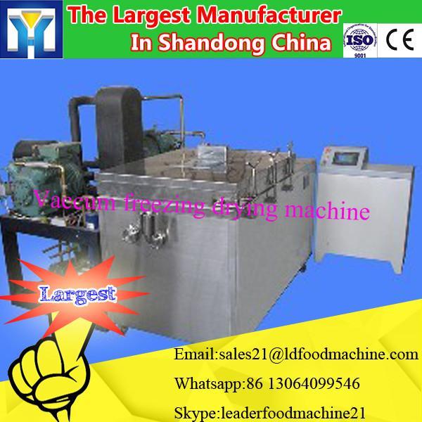 New product 2016 vacuum freeze dried fruit lyophilization machine #1 image