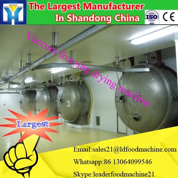 Advance Vegetable Vacuum Freeze Dryer/leafy Vegetable Freeze Drying Machine Price #3 image