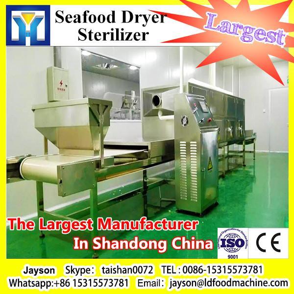 Banana Microwave Chips Microwave Drying Machine #1 image