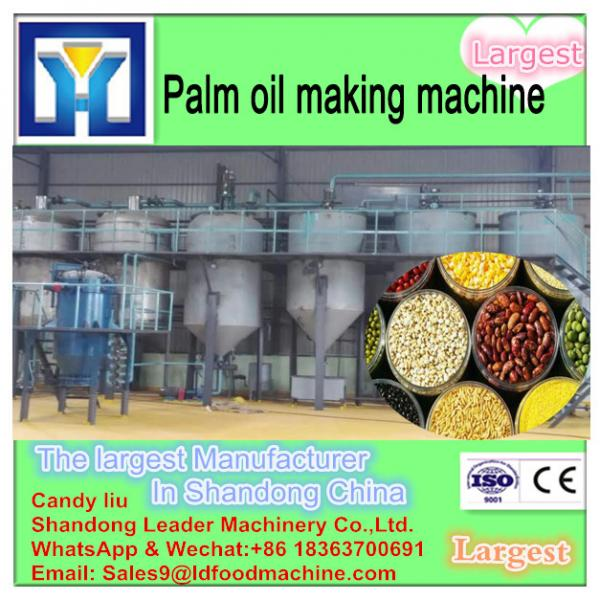 Palm Oil mill, Palm Fruits pressing oil machine, Palm crude oil extraction line #2 image
