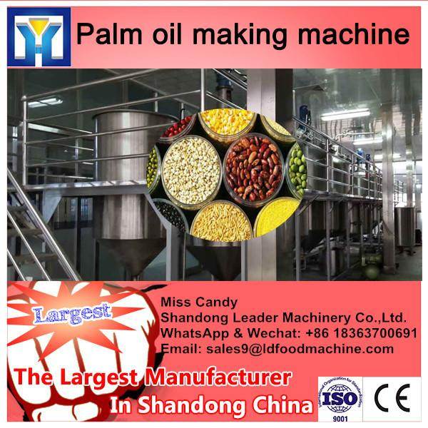 Chinese palm fresh oil processing machinery manufacturer for edible oil mill #1 image