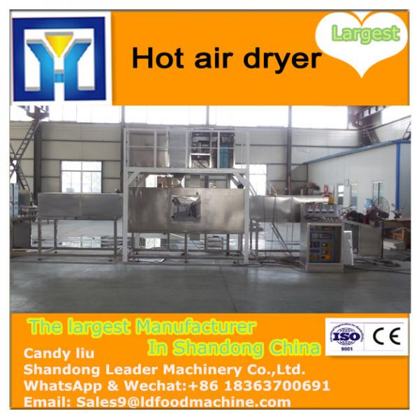 Hot air small fruits drying machine/ batch type fruits drying machine #2 image