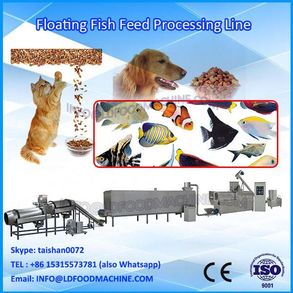 Super quality and New able Floating Fish Feed Pellet Processing machinery with Double Screw #1 image
