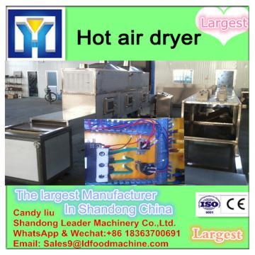 Prunes Multiple layer continuous type mesh belt dryer