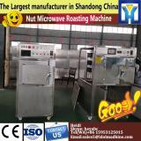 Mesh belt dryer for food