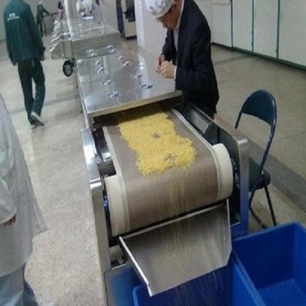 good effective 60KW big quantity out put walnuts roasting equipment #1 image