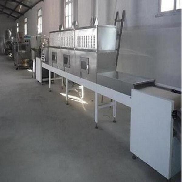 60KW microwave pistachion roasting progress equipment #1 image