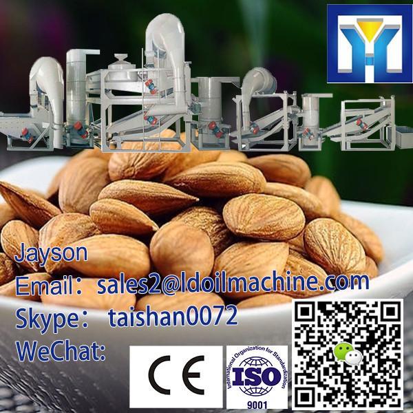 Nuts/Almonds/Badam/Apricot Seed/Hazelnut Shelling Machine|Shell&Kernel Separating Machine 0086- #1 image