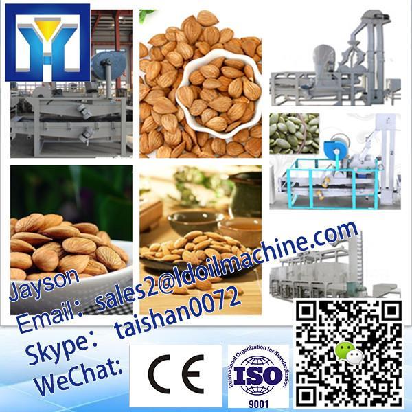 Nuts/Almonds/Badam/Apricot Seed/Hazelnut Shelling Machine|Shell&Kernel Separating Machine 0086- #3 image