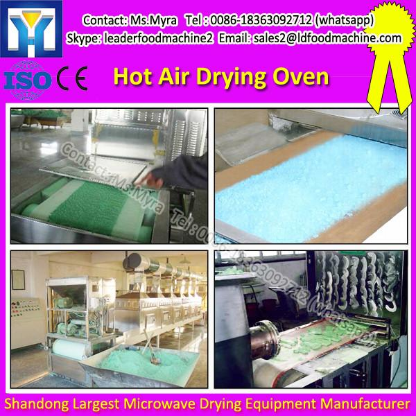 New Condition And Dehumidifier Type China Hot Air Sterilizing Vacuum Belt Dryer Oven #1 image