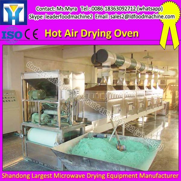 Industrial fruit processing dehydrator hot air belt dryer machines #1 image