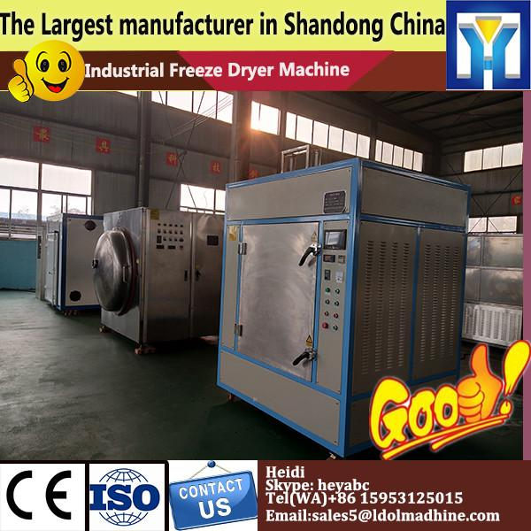 High frequency food Vacuum freeze dryer with LCD display dryer machine/ Lab Vacuum Freeze Dryer with LD price #1 image