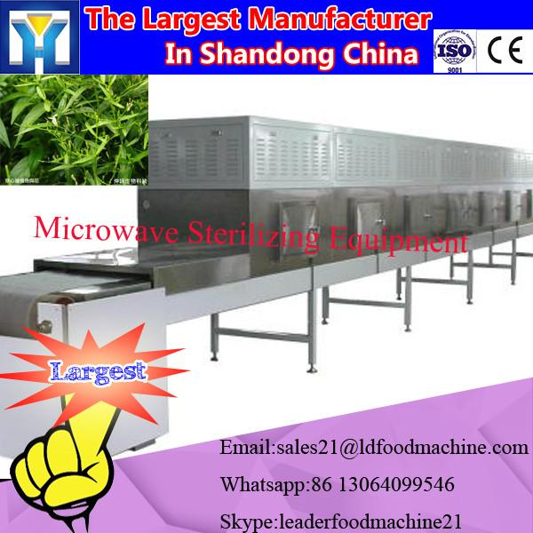 Tunnel microwave olive leaves drying machine/herb leaf dryer #1 image